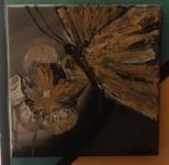 Złoty motyl